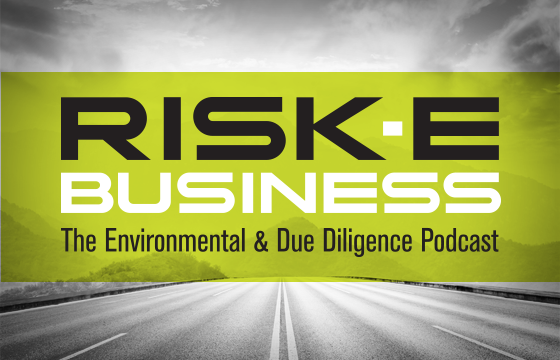 RISK-E BUSINESS